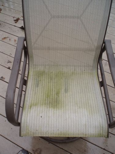 how to clean mold from upholstery how to clean and remove mold mildew from outdoor patio