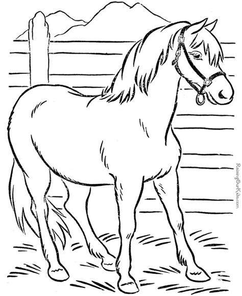 coloring pages of horses for adults 25 best ideas about coloring pages on