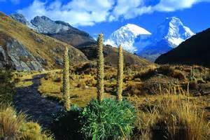 montana möbel imagenes ethel imagenes de monta 209 as altas mundo