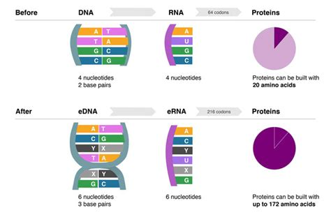 Dna Dna 1 3 End Haruko Kurumotani the best and worst in a tumultuous year for science wired
