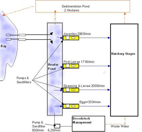 fish hatchery layout fish hatchery design exle