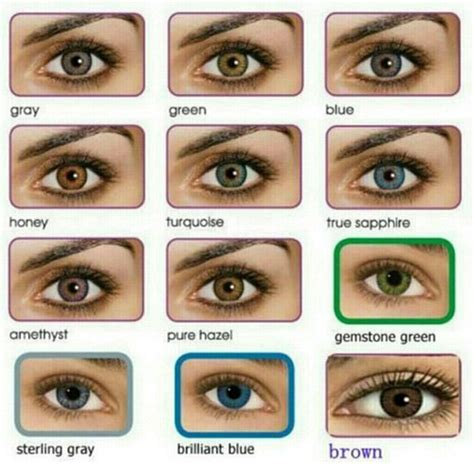 eye color calculator all about the human eye color chart
