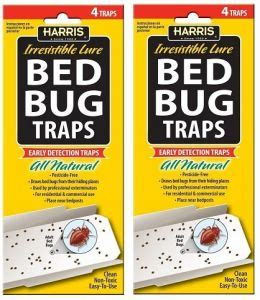 where to buy bed bug traps bed bug traps w irresistible lures 2 pack of 4 8 traps