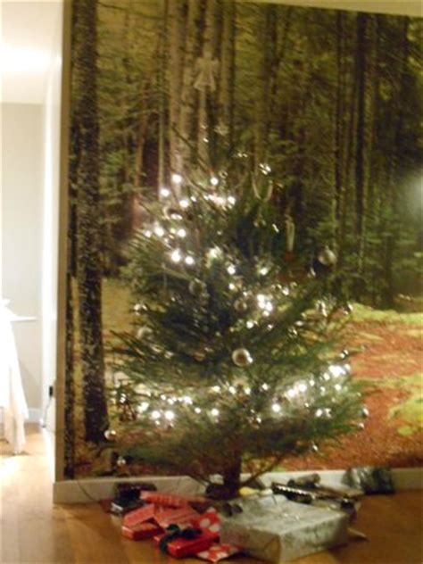 christmas tree picture of center parcs sherwood forest