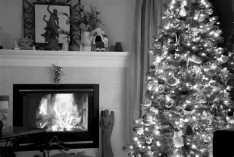 Fireplace Website Loop by Tree With Fireplace Loop Midnight