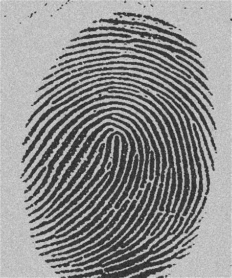 Sealed Record Background Check Why Sealed Records Do Not Keep Fbi Fingerprint Records From Showing Up Top Secret