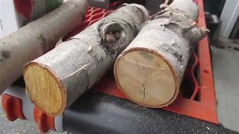 Home Made Christmas Decorations by Diy Rustic Christmas Decor Christmas Craft Collab Youtube