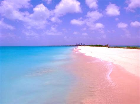 beaches with pink sand barbuda pink sand beach ode to antigua my paradise