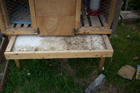 backyard quail coop quail coop backyard chickens