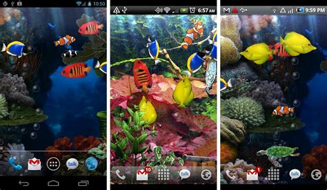 aquarium live wallpaper hd for android youtube best aquarium and fish live wallpapers for android