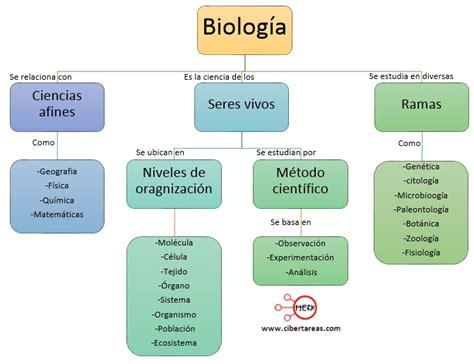 inductor biologia definicion definicion de inductor en biologia 28 images clase 1 biologia 2 1 periodo biolog 237 a como