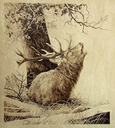 deer print wood burning patterns burt  beulah