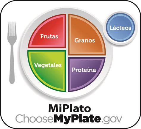 my plate template image result for my plate template bmi project