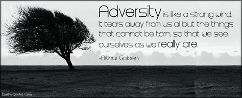 adversity quotes adversity quotes pictures images page 4