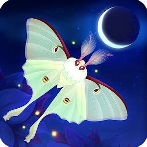 flutter starlight android apps  google play