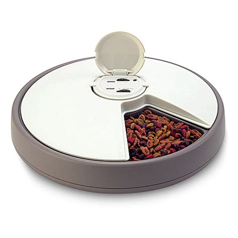 Timed Cat Feeders 6 day automatic pet feeder walmart