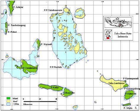 Batu Buton Aneka Motif aneka ragam jenis sanca batik reticulated phyton kaskus