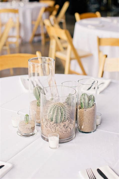 Best 25  Cactus centerpiece ideas on Pinterest   Cactus