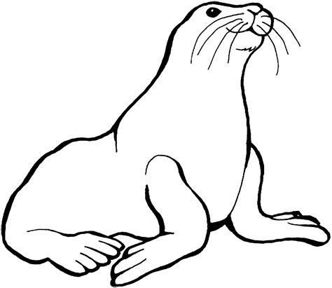 Sea Lion Coloring Pages Printable | coloring picture of animals for kids sea lions coloring