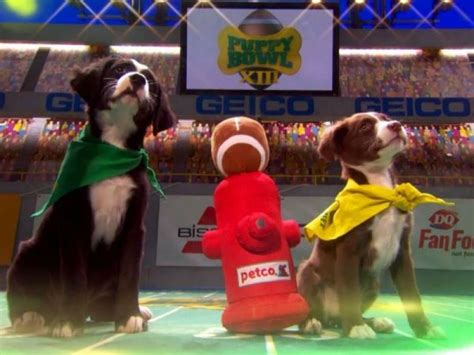puppy bowl adoptions puppy bowl 2017 and adopt your own playmate pleasantville ny patch