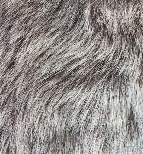 grey female pubichair what are the common causes of gray pubic hair with pictures