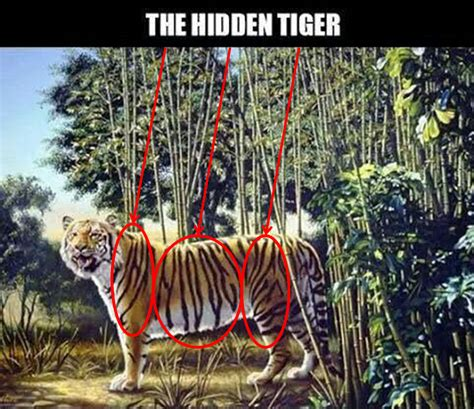 Optical Illusions Wallpaper the hidden tiger game