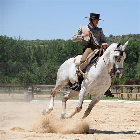 imagenes de vaqueras y caballos doma vaquera el arte ecuestre