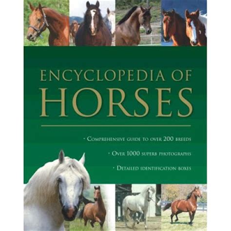 horses and books augenstein my world in pictures more books