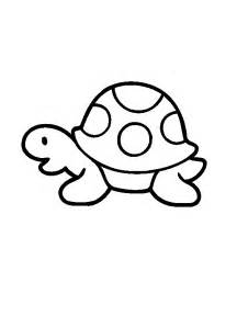 baby turtles coloring pages boy and bird coloring pictures