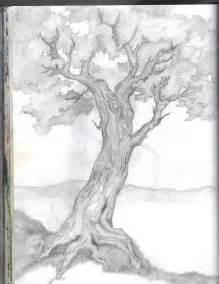 tree sketch by abscondthemelody on deviantart