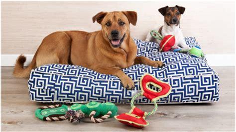 come fare un cuscino per cani dalani divani per cani relax a quattro ze