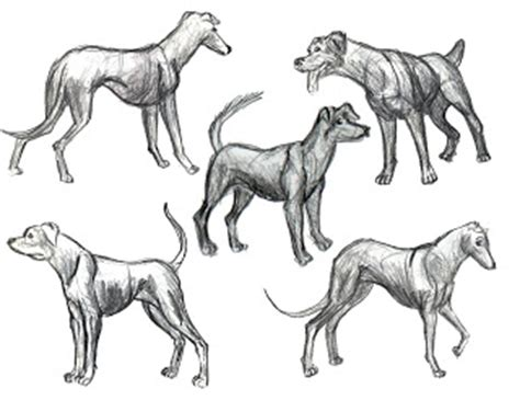doggy gestures in urban sketching the complete guide art of john guy capilano commercial animation portfolio