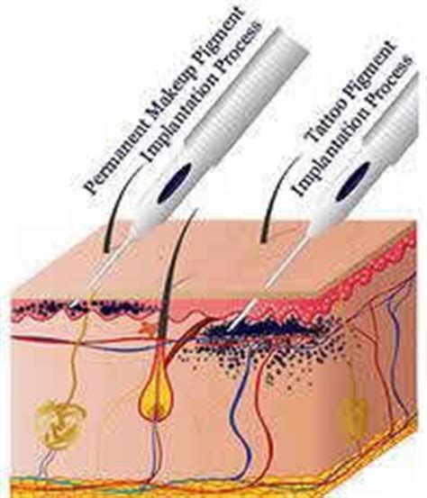 tattoo removal umhlanga touch of beauty salon richards bay permanent make up