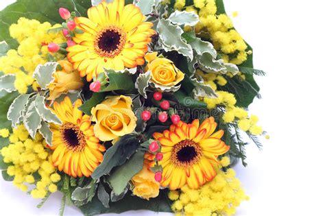 mazzo di fiori con mimose mazzo di fiori e di mimosa gialli fotografia stock