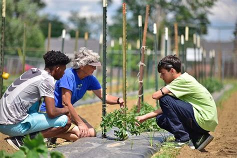 outdoor classroom palmer home garden teaches agricultural