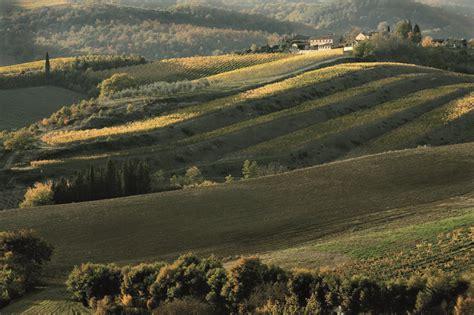 chianti fiorentino il chianti fiorentino firenze made in tuscany