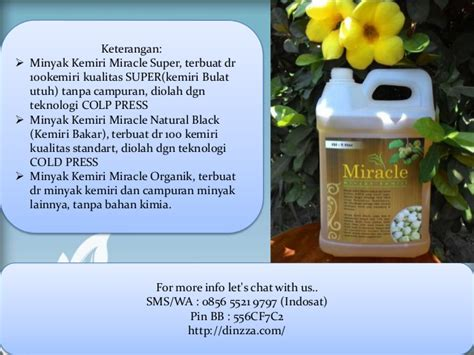 Minyak Kemiri Per Liter grosir minyak kemiri 0856 5521 9797 indosat