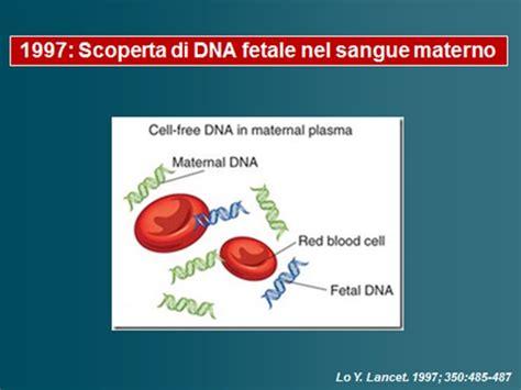 test dna fetale studio dna fetale circolante nel sangue materno