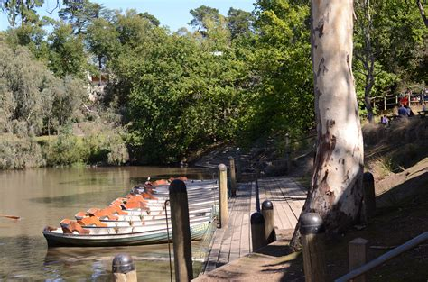 row boat melbourne fairfield park boathouse and tea gardens melbourne by