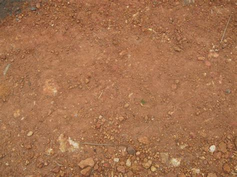ground textures texture ground earth download photo background ground