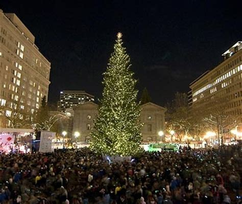 images of portlands xmas trees america s tallest trees travel leisure