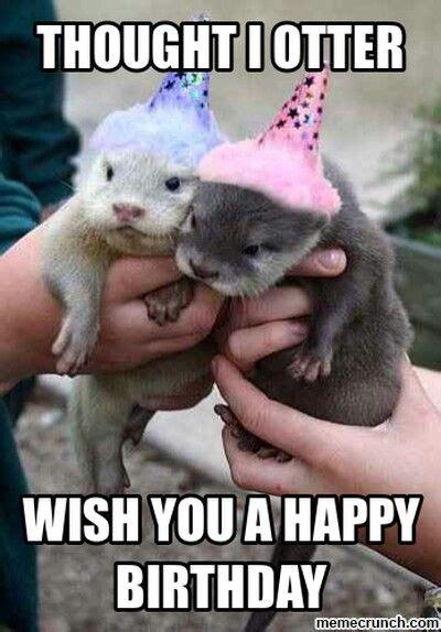Happy Birthday Animal Meme - 20 best birthday memes images on pinterest birthday