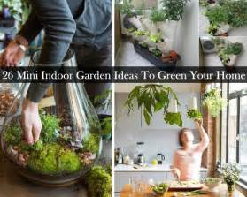 gallery for gt indoor garden ideas