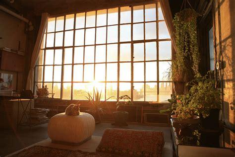 home design studio brooklyn living with plants brooklyn studio johanna burke
