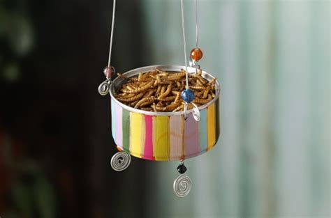1 Story Home Plans by Diy Bird Feeder For Attracting Bluebirds Birds And Blooms