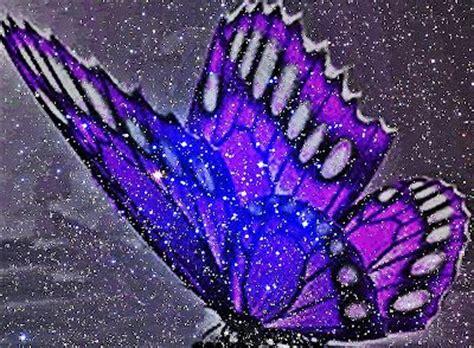 imagenes de mariposas brillantes 27 best images about my face book on pinterest