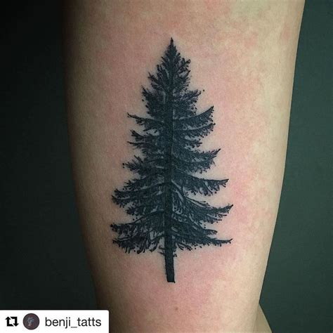 spruce tree tattoo best 25 pine ideas on