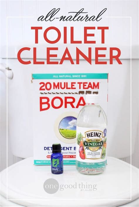 toilet bowl cleaner kitchen 396 best cleaning tips images on pinterest cleaning