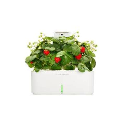 click and grow smartpot with strawberry indoor grow kit