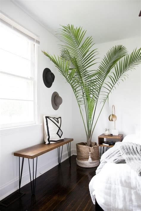 bedroom plants 17 best ideas about bedroom plants on pinterest plants in bedroom plant decor and plants indoor